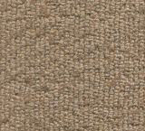 V420 - Sundance (Elevation Carpets - Lift)