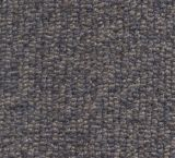V435 - Antiqua (Elevation Carpets - Lift)