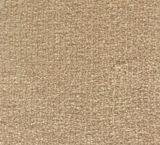 V215 - Vista (Elevation Carpets - Slipstream)