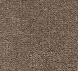 V275 - Crestone (Elevation Carpets - Slipstream)