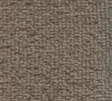 V276 - Crestone (Elevation Carpets - Crosswinds)