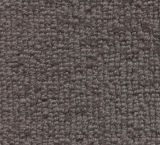 V300 - Denali (Elevation Carpets - Crosswinds)