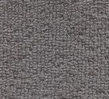 V302 - Shasta (Elevation Carpets - Crosswinds)